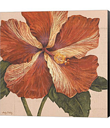 Island Hibiscus I by Judy Shelby Canvas Art