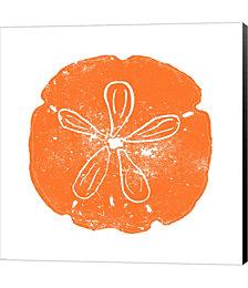 Orange Sand Dollar by Veruca Salt Canvas Art