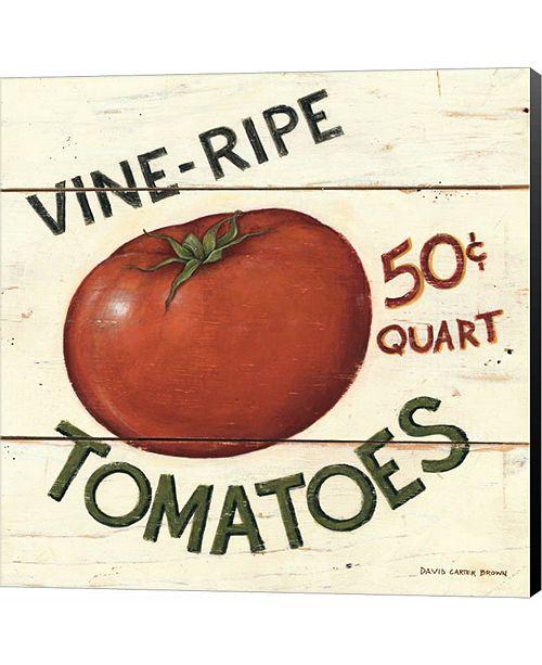 Metaverse Vine Ripe Tomatoes by David Carter Brown Canvas Art