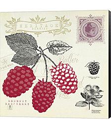 Raspberry Notes by Studio Mousseau Canvas Art