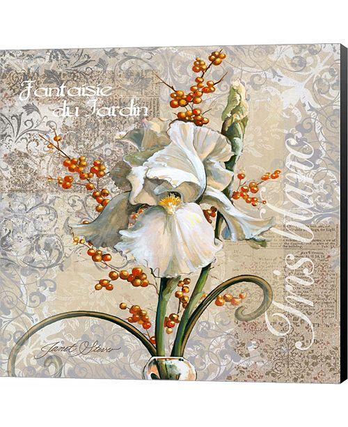 Metaverse White Iris Fantasy by Janet Stever Canvas Art