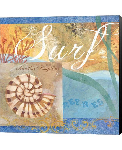 Metaverse Seashells IV by Fiona Stokes-Gilbert Canvas Art