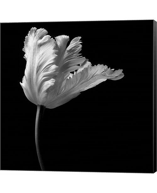 Metaverse Parrot Tulip by Michael Harrison Canvas Art