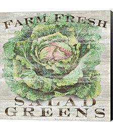 Farm Fresh Greens by Sue Schlabach Canvas Art