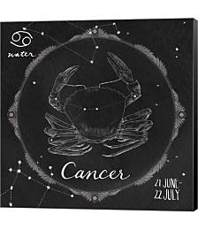 Night Sky Cancer by Sara Zieve Miller Canvas Art
