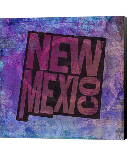 Metaverse New Mexico on Pattern by Art Licensing Studio Canvas Art