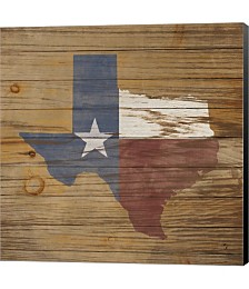 Lone Star by Janelle Penner Canvas Art