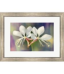 Floral Palette I by Leda Robertson Framed Art