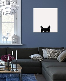 "iCanvas ""Curiosity"" by Jon Bertelli Gallery-Wrapped Canvas Print (18 x 18 x 0.75)"