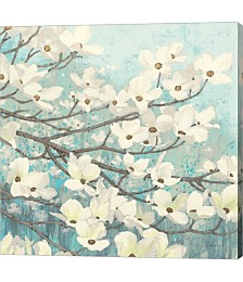 Dogwood Blossoms II by James Wiens Canvas Art