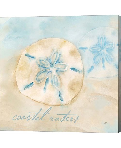 Metaverse Watercolor Shell Sentiments IV by Cynthia Coulter Canvas Art