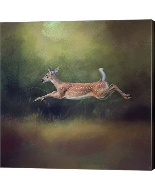 Metaverse I Can Fly White Tailed Fawn by Jai Johnson Canvas Art