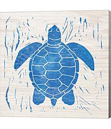 Sea Creature Turtle Blue by Courtney Prahl Canvas Art
