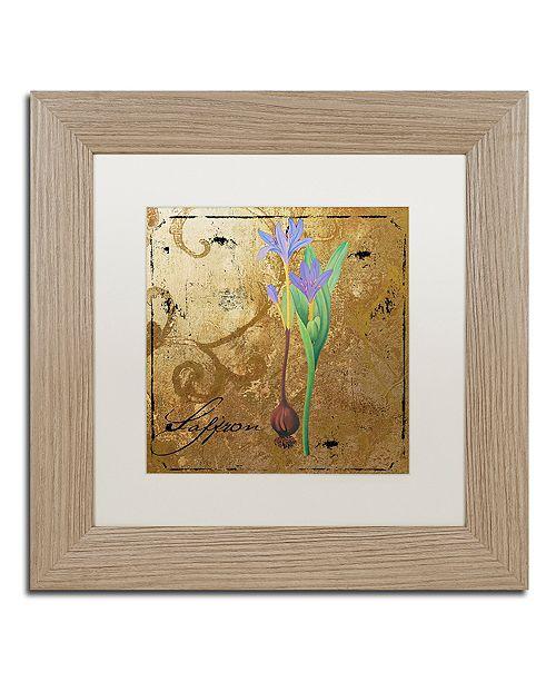 "Trademark Global Color Bakery 'Black Gold Herbs Ii' Matted Framed Art, 11"" x 11"""