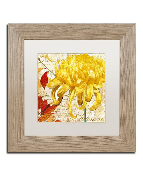 "Trademark Global Color Bakery 'Chrysanthemums Ii' Matted Framed Art, 11"" x 11"""