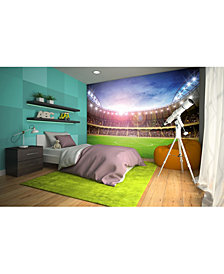 Stadium At Night Wall Mural