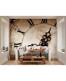 Timepiece Wall Mural