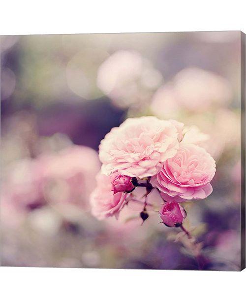 Metaverse In the Garden by Sarah Gardner