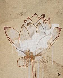 "Sacred Lotus Flower Drawing 16"" X 20"" Canvas Wall Art Print"