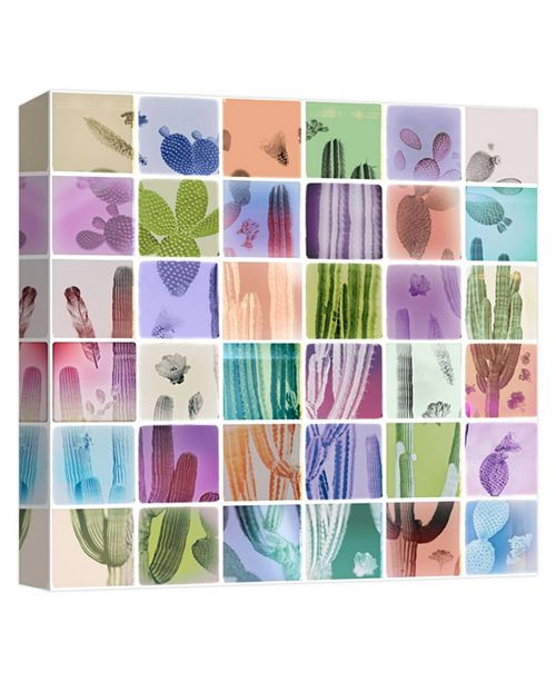 PTM Images Cacti Decorative Canvas Wall Art