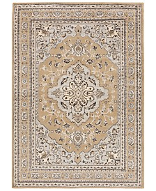 "Surya Paramount PAR-1056 Khaki 8'10"" x 12'9"" Area Rug"