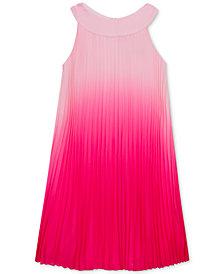 Rare Editions Big Girls Pleated Ombré Chiffon Dress