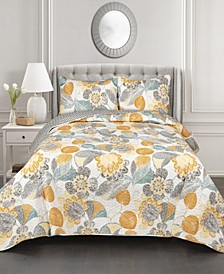 3-Pc Set Full/Queen Quilt Set