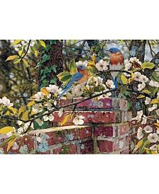 Cobble Hill Backyard Blues Puzzles 1000 Pieces