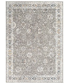 "Presidential PDT-2307 Gray 3'3"" x 5' Area Rug"