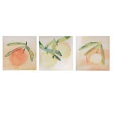 Madison Park Orange Crushes Gel Coat Canvas, Set of 3