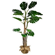 "Laura Ashley 72"" Tall Monstera Artificial  Faux Décor with Burlap Kit"
