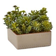 "Nearly Natural 7"" Mixed Succulent Artificial Plant w/ Decorative Planter"