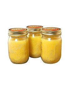 Lumabase Set of 3, 12Oz Citronella Candles in Mason Jars