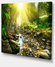 "Designart Mountain Stream In Forest Landscape Photography Canvas Print - 20"" X 12"""
