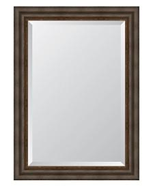 """Dark Bronze with Gold Lip Framed Mirror - 31.25"""" x 43.25"""" x 2"""""""