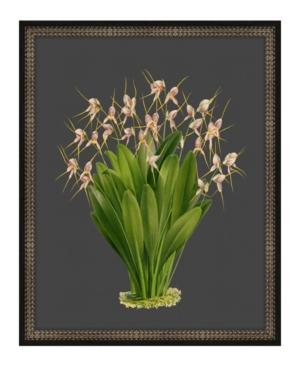 Beautiful Botanical on Black Viii Framed Giclee Wall Art - 17