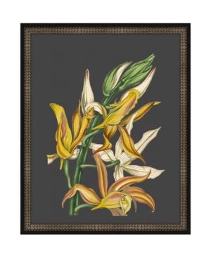 Beautiful Botanical on Black Iv Framed Giclee Wall Art - 17