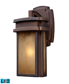 Sedona 1-Light Outdoor Sconce in Hazelnut Bronze - LED Offering Up To 800 Lumens (60 Watt Equivalent)