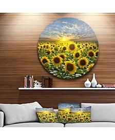 "Designart 'Field Of Blooming Sunflowers' Large Flower Metal Circle Wall Art - 38"" x 38"""