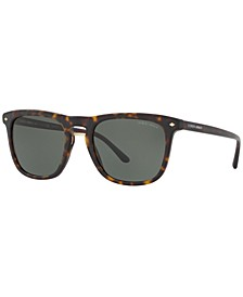 Polarized Sunglasses, AR8107 53