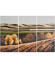 Harvest Dreams Triptych Wall Art in Multi
