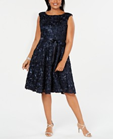 Alex Evenings Plus Size Sleeveless Embroidered Dress