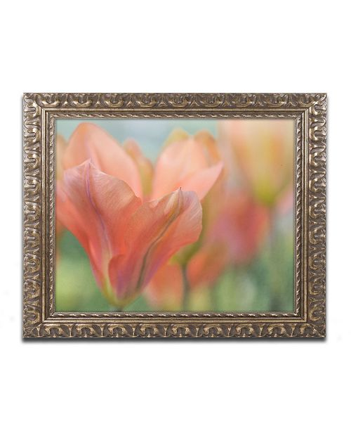 "Trademark Global Cora Niele 'Orange Wings Tulips' Ornate Framed Art - 20"" x 16"" x 0.5"""