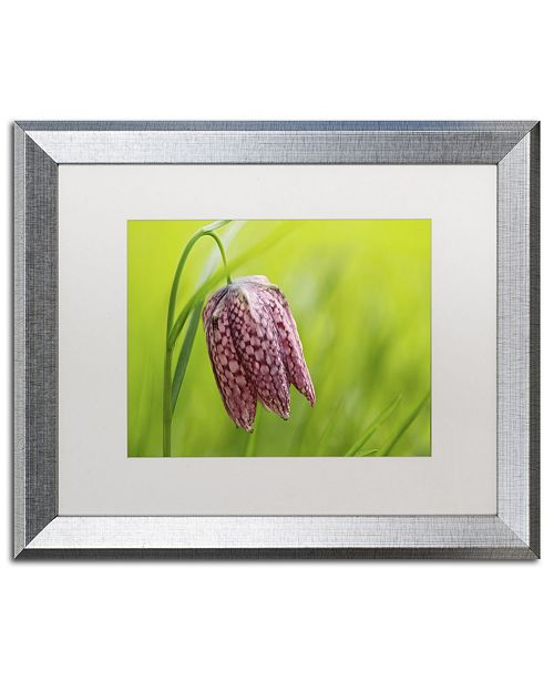"Trademark Global Cora Niele 'Snake's Head Fritillary Flower' Matted Framed Art - 20"" x 16"" x 0.5"""