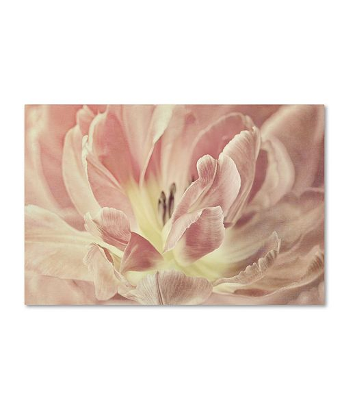 "Trademark Global Cora Niele 'Vintage Tulip' Canvas Art - 47"" x 30"" x 2"""