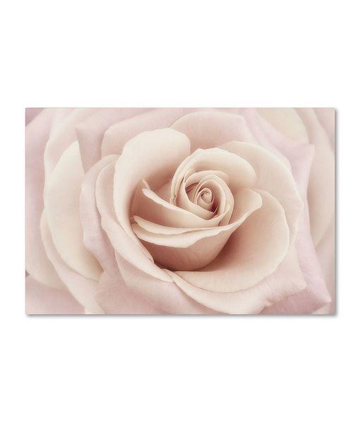 "Trademark Global Cora Niele 'Peach Pink Rose' Canvas Art - 32"" x 22"" x 2"""