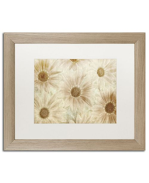 """Trademark Global Cora Niele 'Vintage Daisies' Matted Framed Art - 20"""" x 16"""" x 0.5"""""""