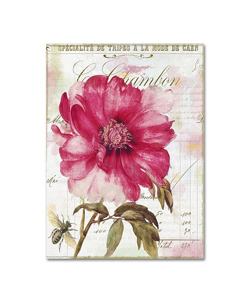 "Trademark Global Color Bakery 'Pink Peony' Canvas Art - 18"" x 2"" x 24"""
