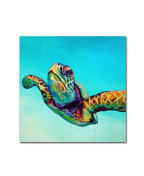 "Trademark Global Corina St. Martin 'Green Sea Turtle' Canvas Art - 14"" x 14"" x 2"""