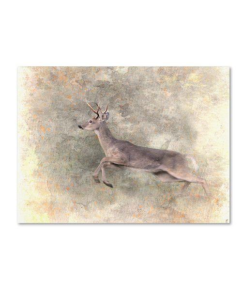 "Trademark Global Jai Johnson 'Run Like The Wind White Tailed Buck' Canvas Art - 24"" x 18"" x 2"""
